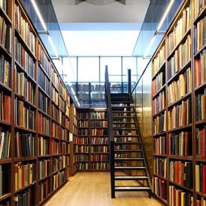 Библиотеки Аскиза